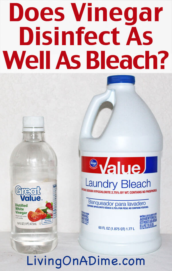 Does vinegar disinfect as well as bleach living on a dime What kind of vinegar is used for cleaning