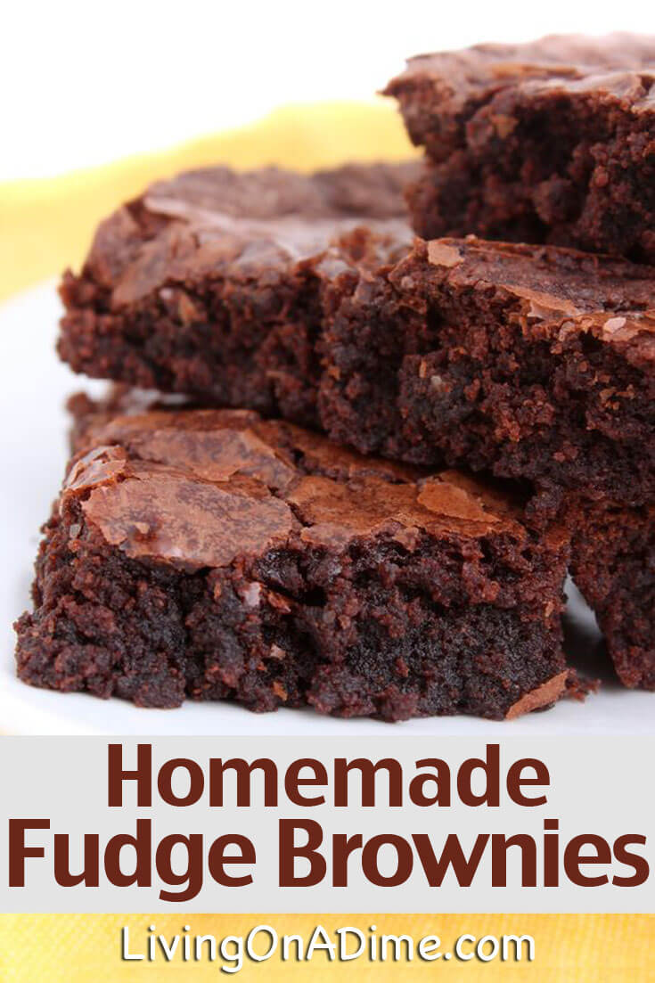 Easy Homemade Fudge Brownies Recipe - Living On A Dime