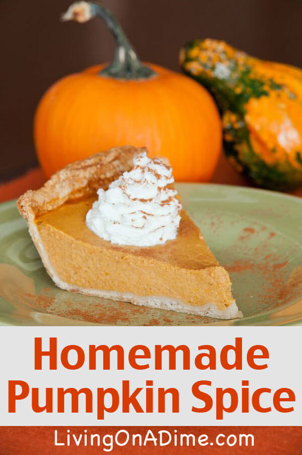 Homemade Pumpkin Pie Spice Mix Recipe - Homemade Seasonings Mixes And Blends