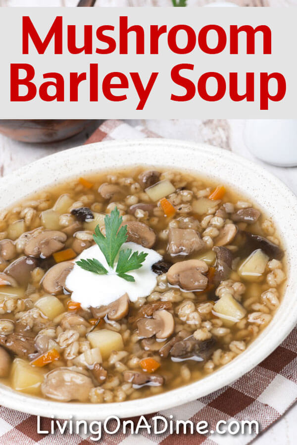 ... Mushroom Barley Soup Recipe, Brownie Banana Delight, Ninety Minute