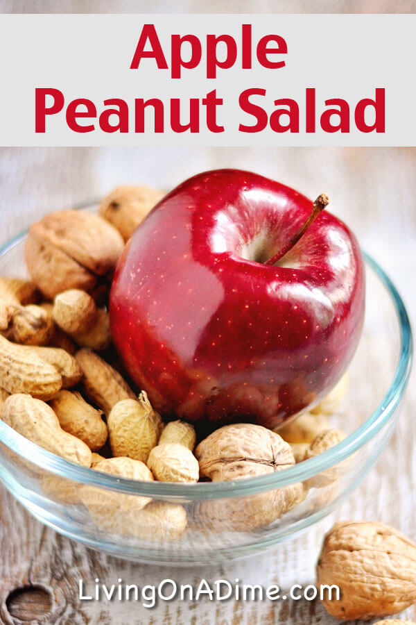 Apple Peanut Salad Recipe - 18 Of The BEST EVER Apple Recipes