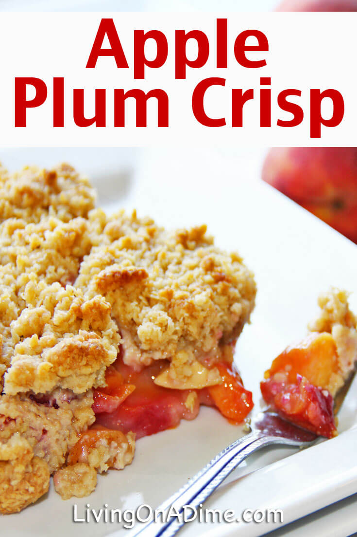 This easy apple plum crisp recipe is another great variation on an apple crisp recipe, with the plums adding a nice sweetness. You can easily substitute peaches or nectarines to make an easy peach cobbler!