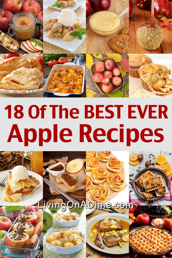 18 Of The BEST EVER Apple Recipes to help you make delicious treats like pies, snacks and applesauce while using all of those extra apples! Lots of yummy recipes all in one place!
