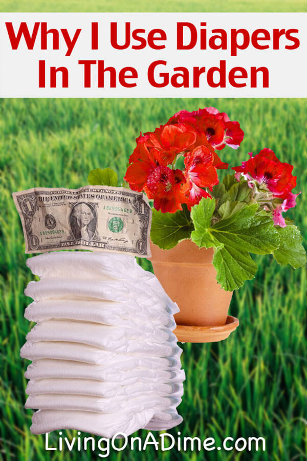 Why I Use Disposable Diapers In The Garden!