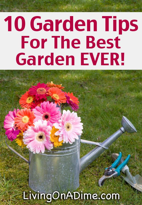 10 Garden Tips For The Best Garden EVER