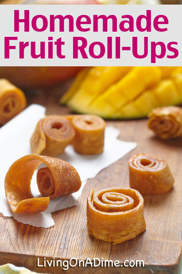 Homemade Fruit Roll-Ups Recipe