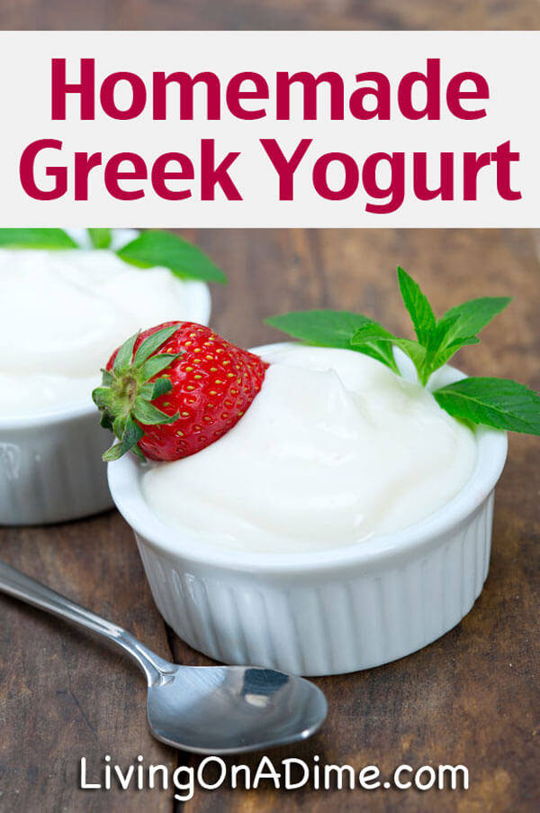 Easy Homemade Yogurt Recipe And Tips Save Money On Yogurt