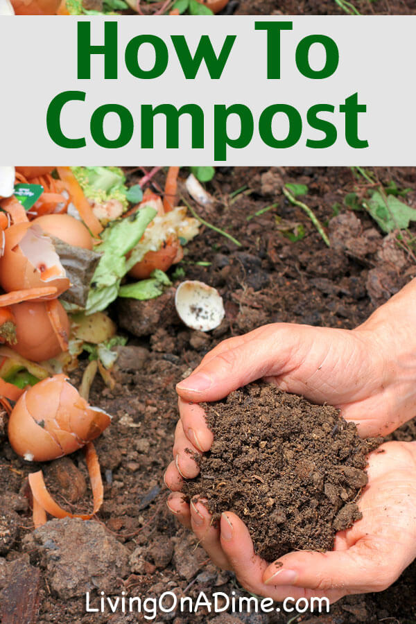 How to Compost - Click Here To Learn How Easy It Is!