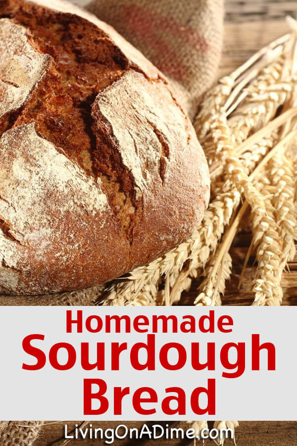 Potato Flake Sourdough Bread Starter Recipe