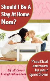 Should I Be A Stay At Home Mom e-book