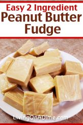 This easy peanut butter fudge is one of our readers' favorite 2 ingredient Christmas candy recipes! It makes a smooth and creamy fudge with the delicious taste of peanut butter! Find this and lots more easy Christmas candy recipes with 2 ingredients here!