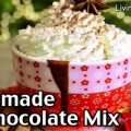 Homemade Hot Chocolate Mix Recipe