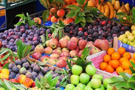 lots of fruit