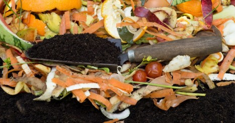 12 Things you Didn't Know You Could Compost