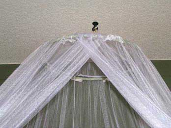 We used a hook to hang the canopy and an ironed sheet to get the color & Inexpensive Bedroom Makeover - Living on a Dime