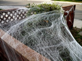 decorate with spooky spiders - Spider Web Decoration