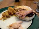 Turkey and cranberry sauce