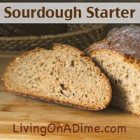 Potato Flake Sourdough Starter