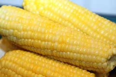 Delicious corn on the cob