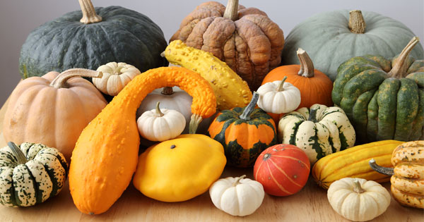 How To Cook Squash And Winter Vegetables