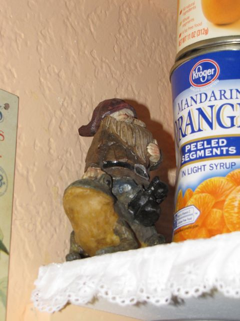 gnome in the organzed pantry