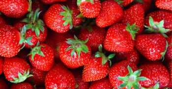 Strawberry Recipes! Tasty And Easy Ways To Use Strawberries!