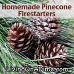 Homemade Pinecone and Sawdust Firestarters