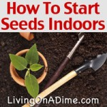 How To Start Garden Seeds Indoors