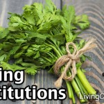 Cooking Substitutions And Equivalents