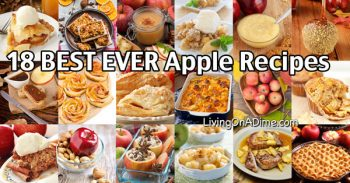 18 Of The BEST EVER Homemade Apple Recipes
