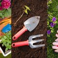 How To Start A Garden - Cheap!