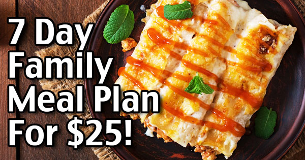 7 Day Meal Plan for $25: Cheap And Easy Family Meals
