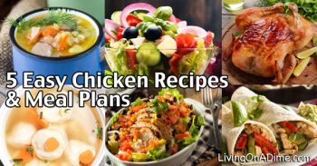 5 Easy Chicken Recipes And Meal Plans For $5 Or LESS!