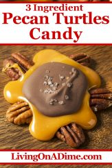 This chocolate caramel pecan turtles recipe is an easy Christmas candy recipe, perfect for the caramel pecan lover in your family! These are the same as the turtles at your favorite fudge shop, only a lot less expensive! Find this and lots more easy Christmas candy recipes with 3 ingredients or less here!