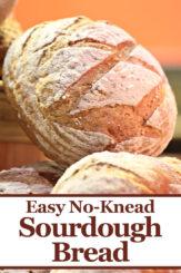 Easy No Knead Sourdough Bread Recipe