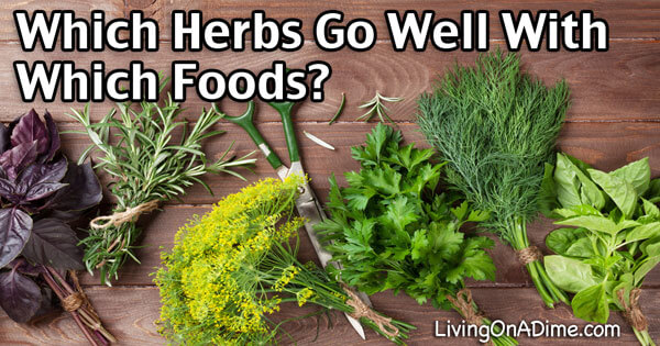 Herb Guide – Which Herbs Go Well With Which Foods?