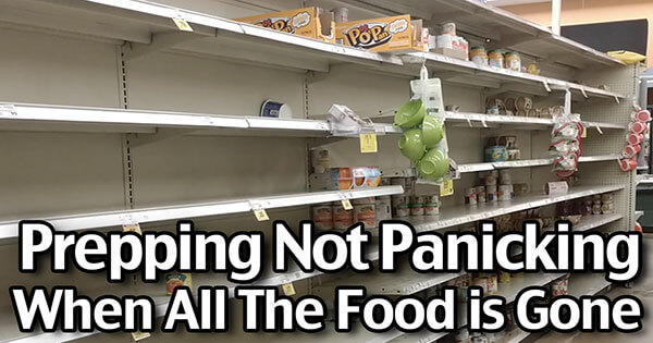 Prepping in Panic! 2 Weeks- $110 - 4 People! What To Buy When All The Food Is Gone