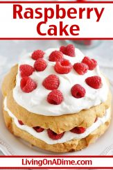 This raspberry cake recipe makes a light and fluffy cake style dessert with a delicious raspberry flavor and the perfect colors for Valentine's Day! Get this and more Valentine's Day candy recipes and treats here!